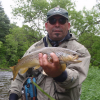 Adirondack Wild Brown