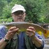 Adirondack Wild Brown Trout
