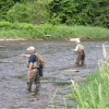 Adirondack Fly Fishing