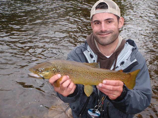 About papa bear 39 s outdoors adirondack wild trout for Adirondack fly fishing