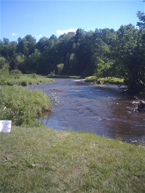 Trout fishing report from adk retreats june 4 2011 for Adirondack fly fishing