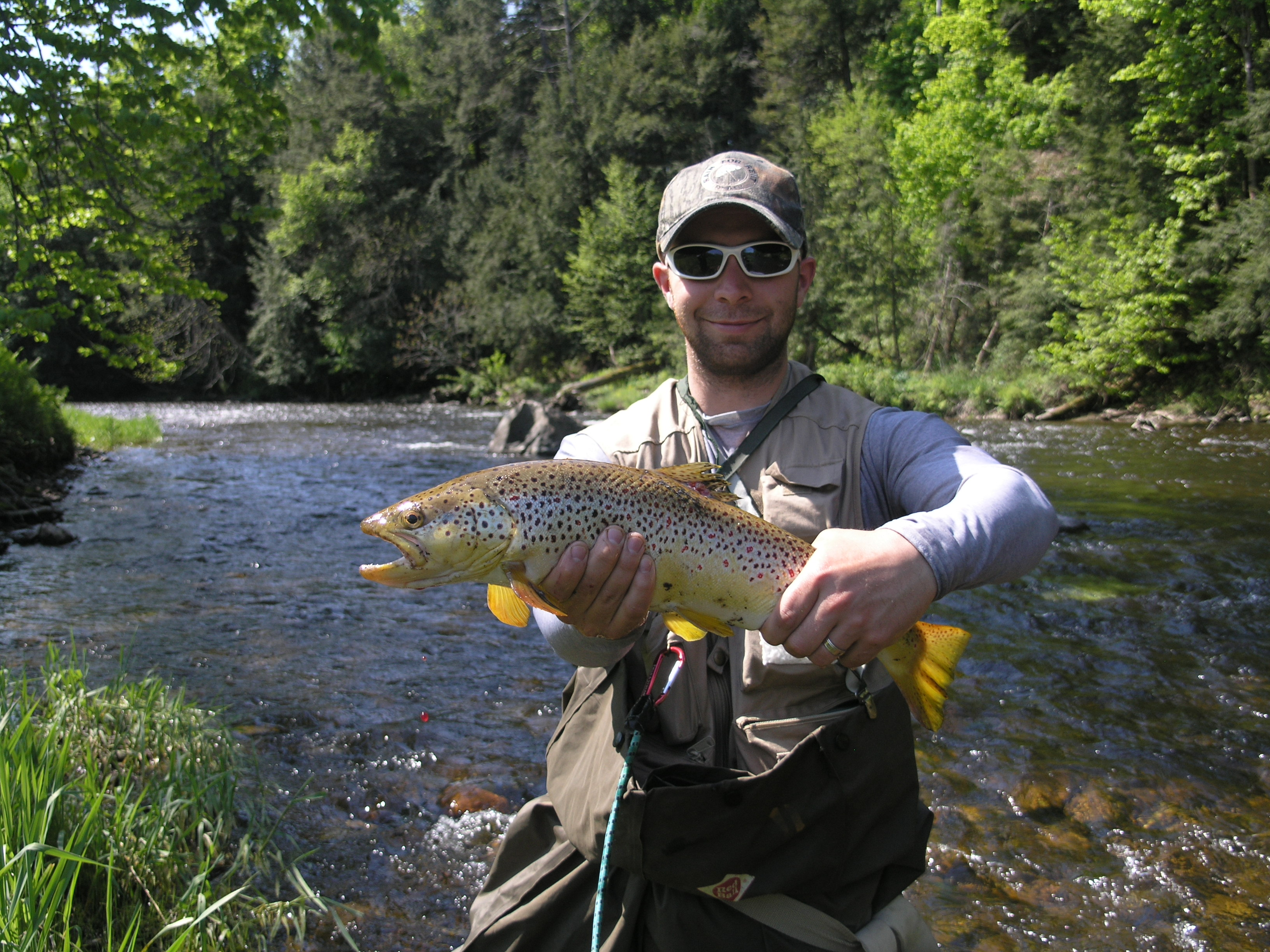 Ny fishing reports may adirondack fly fishing update for Trout fishing ny