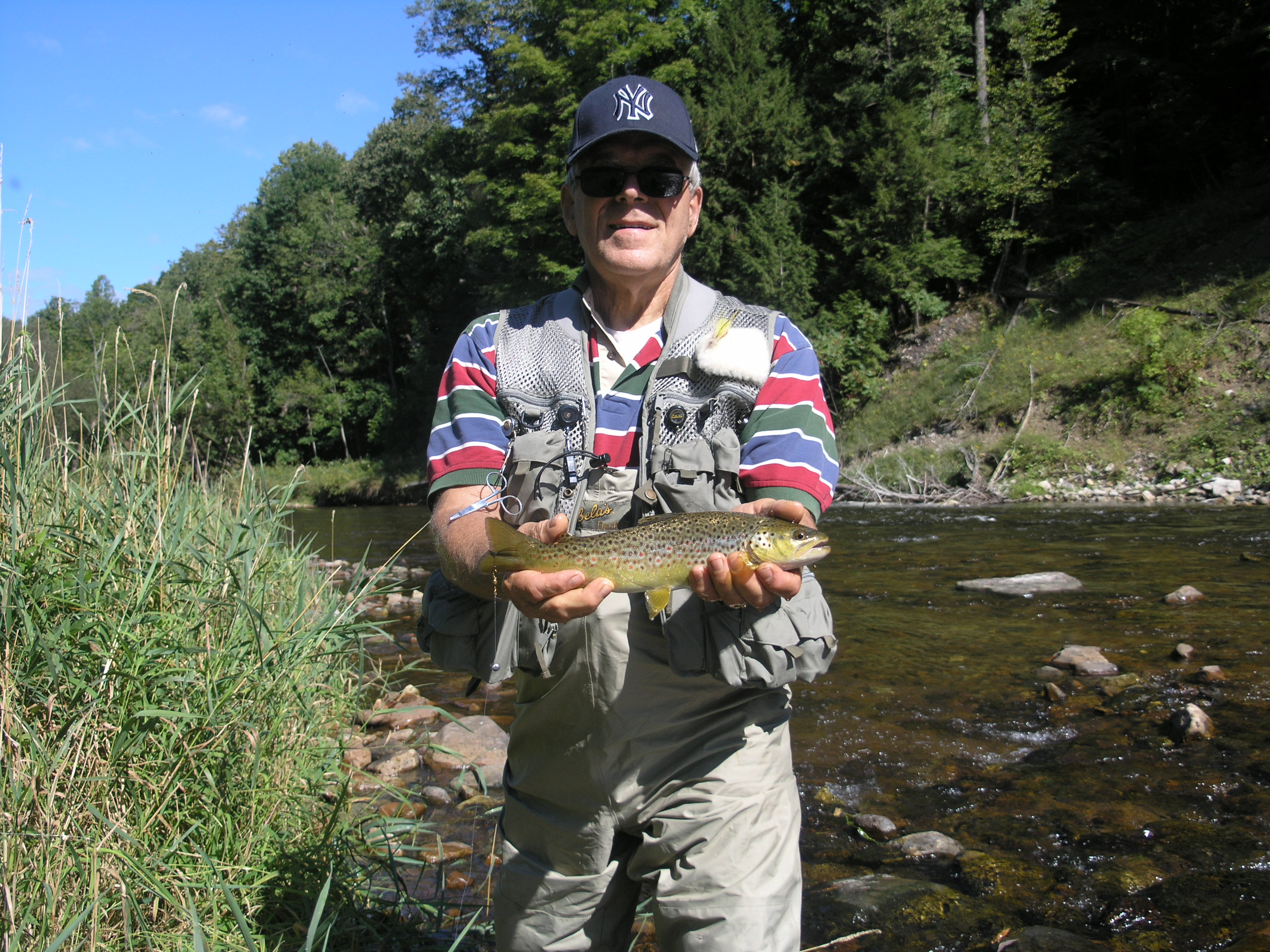 wild adirondack trout fishing